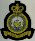 RAF BLAZER BADGES - SQNS 101 - 691